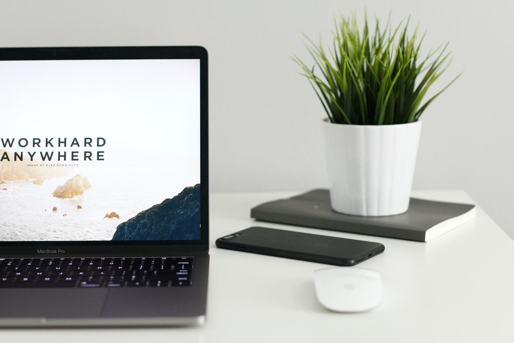 パソコンと植物