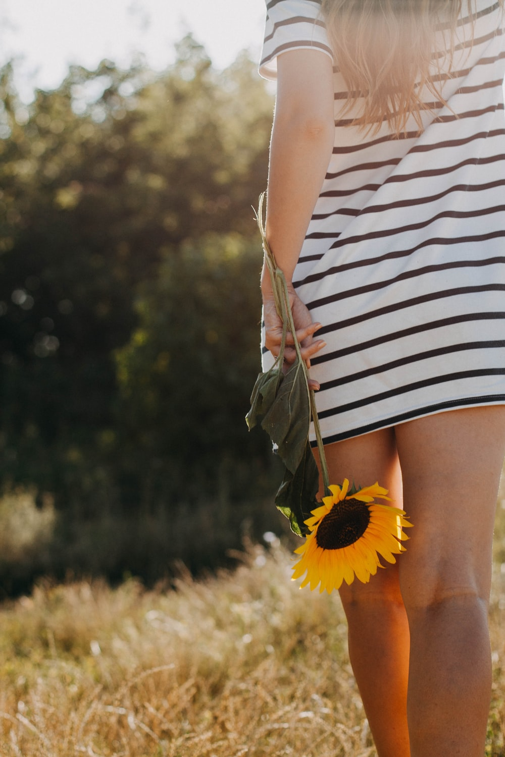 woman holding sunflower while walking