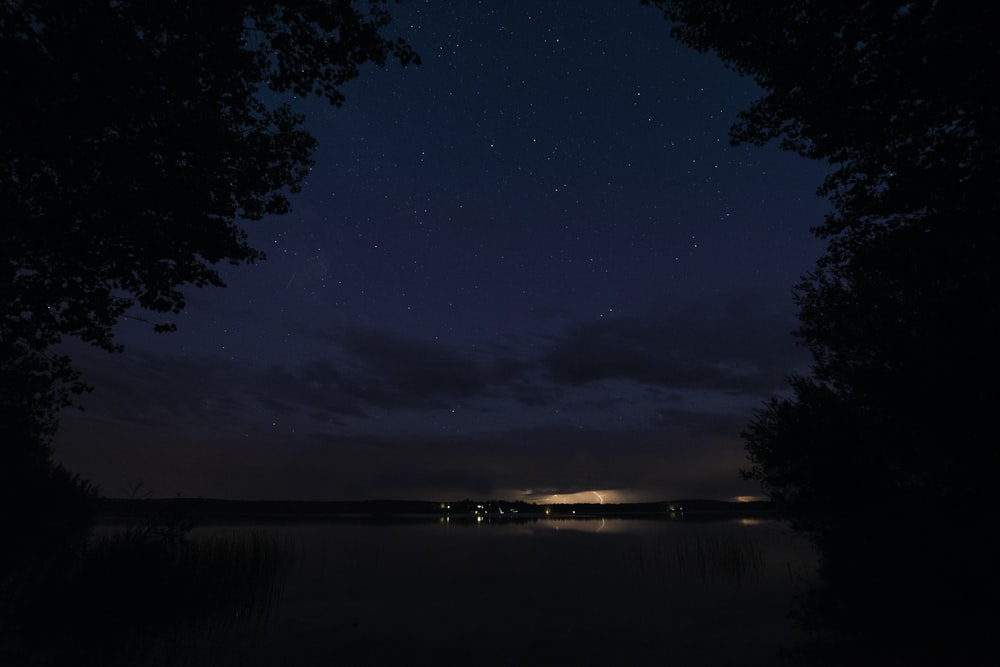 silhouette of trees near body of water at nighttime