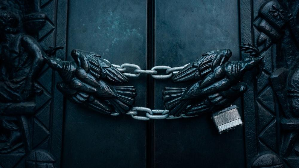 bald eagle door chain lock