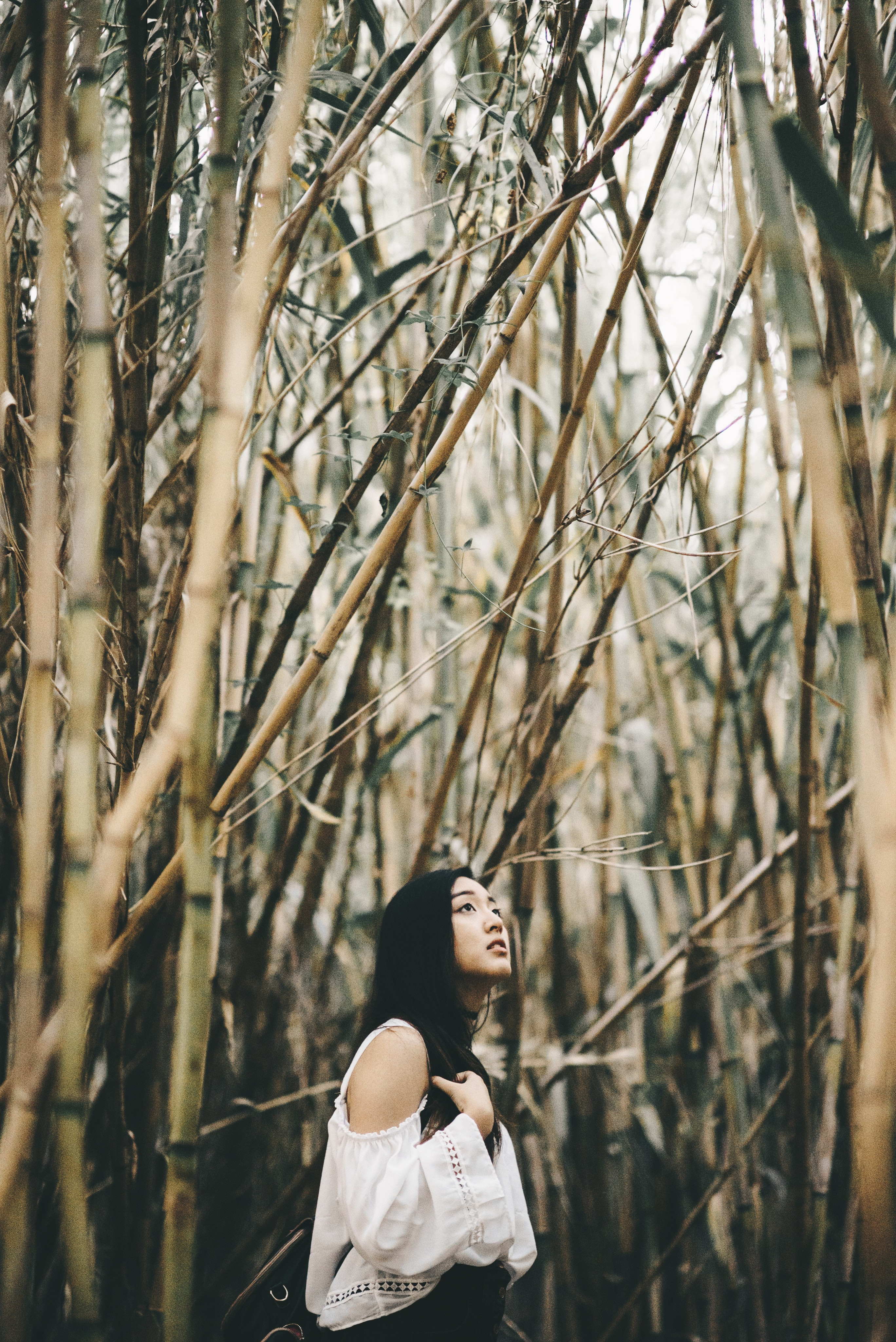 woman in white cold-shoulder top standing inside bamboo forest