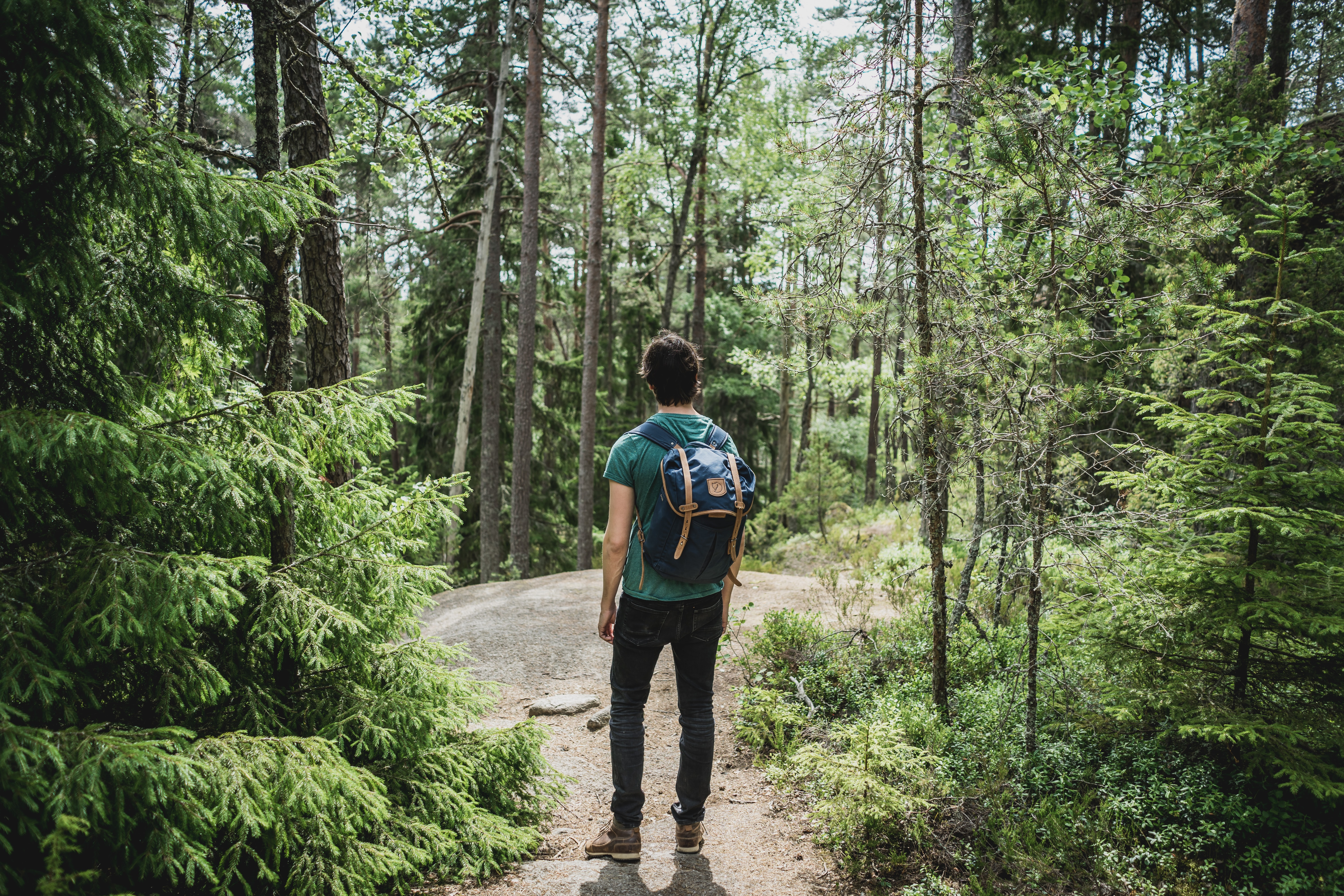 man wearing blue backpack walking through forest