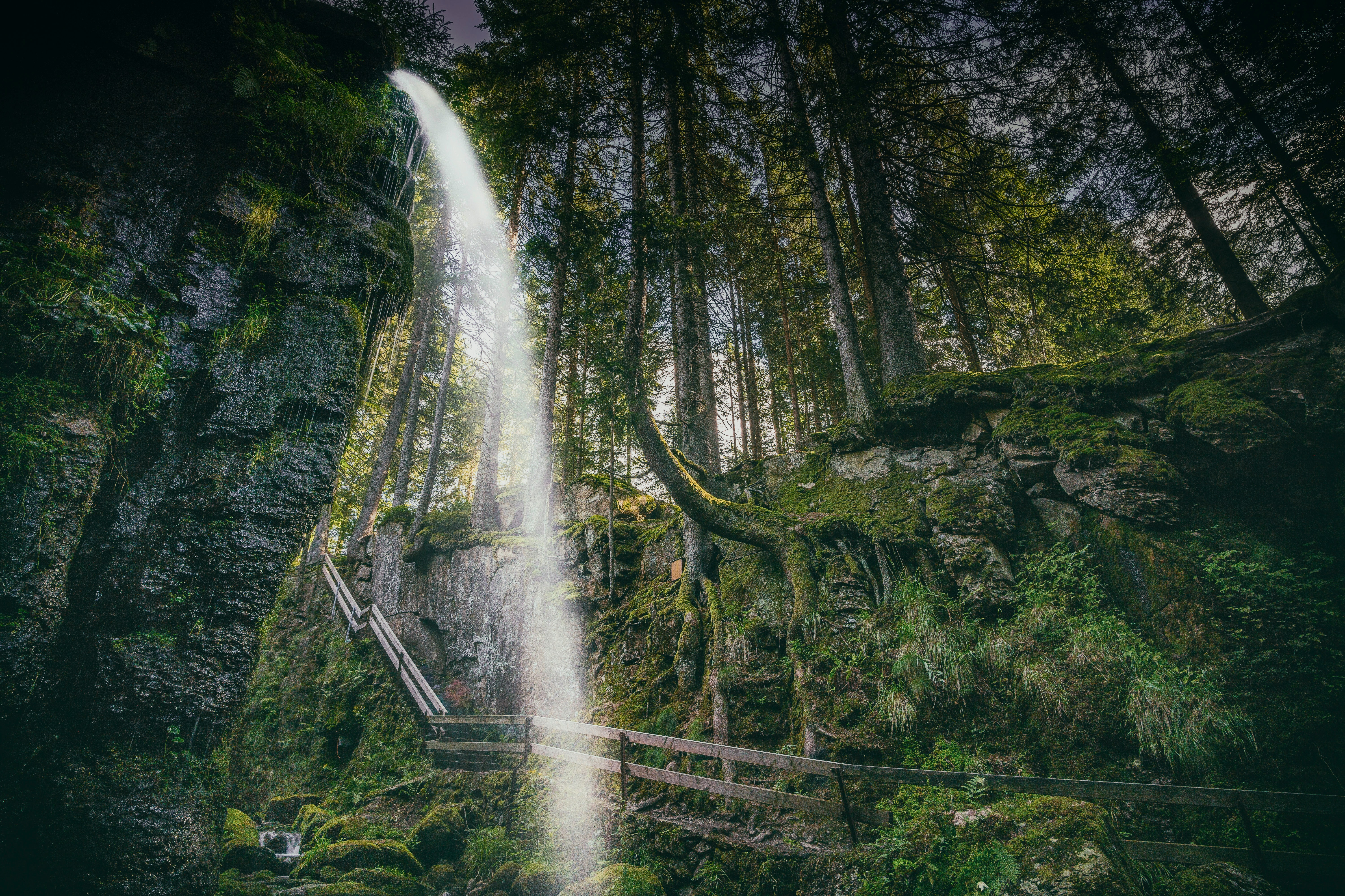 waterfall on forest