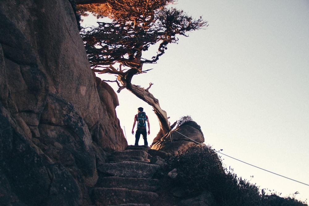man standing near brown tree