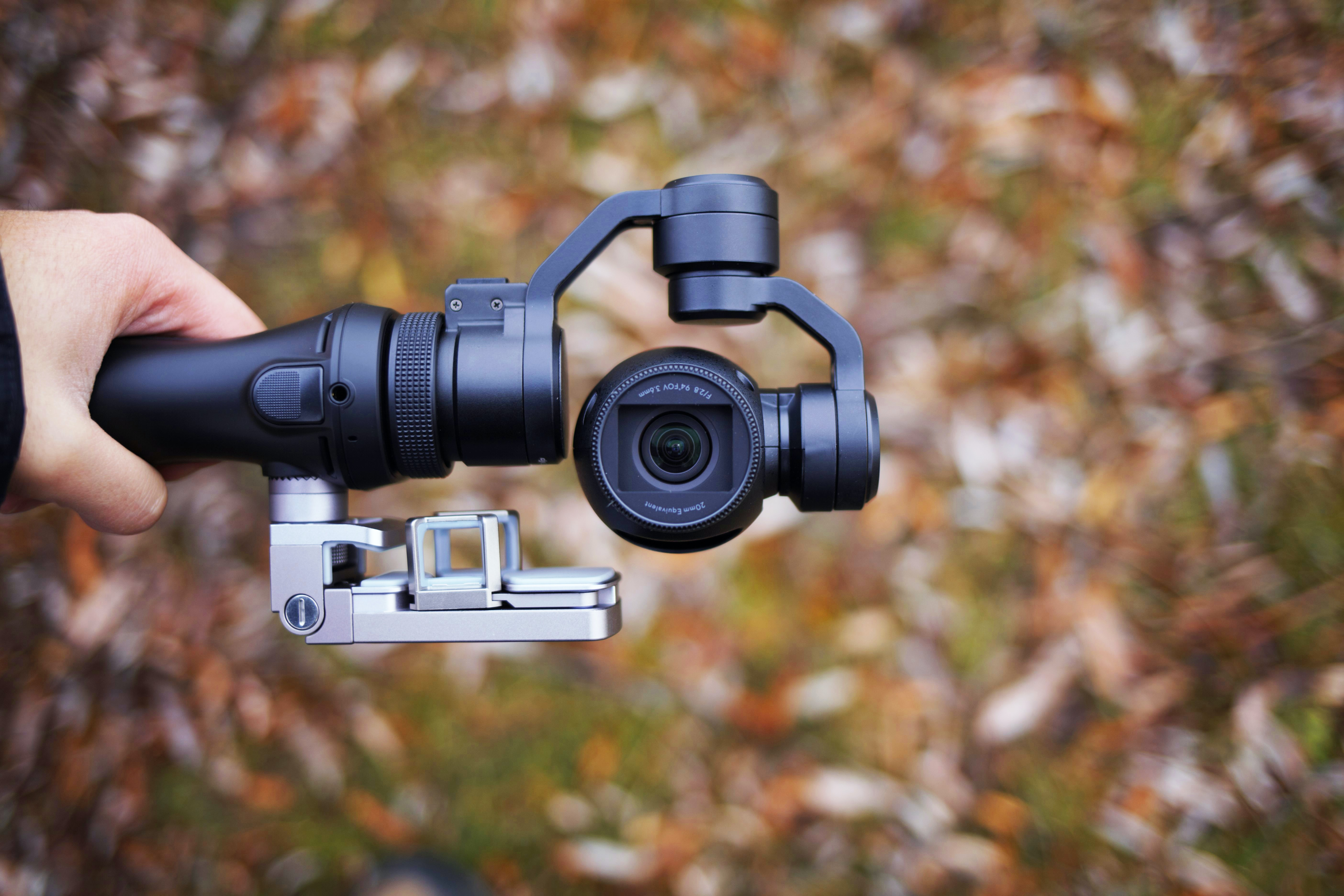 Person holding camera on stabilizer tripod beside red autumn leaves