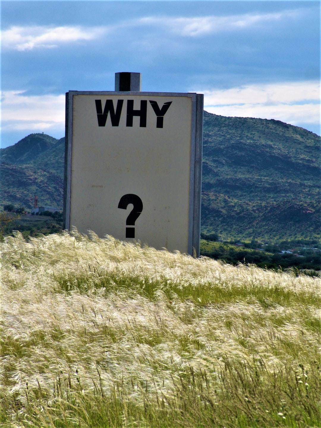 "A photo of a sign in a mountain field, simply reading ""Why?"""