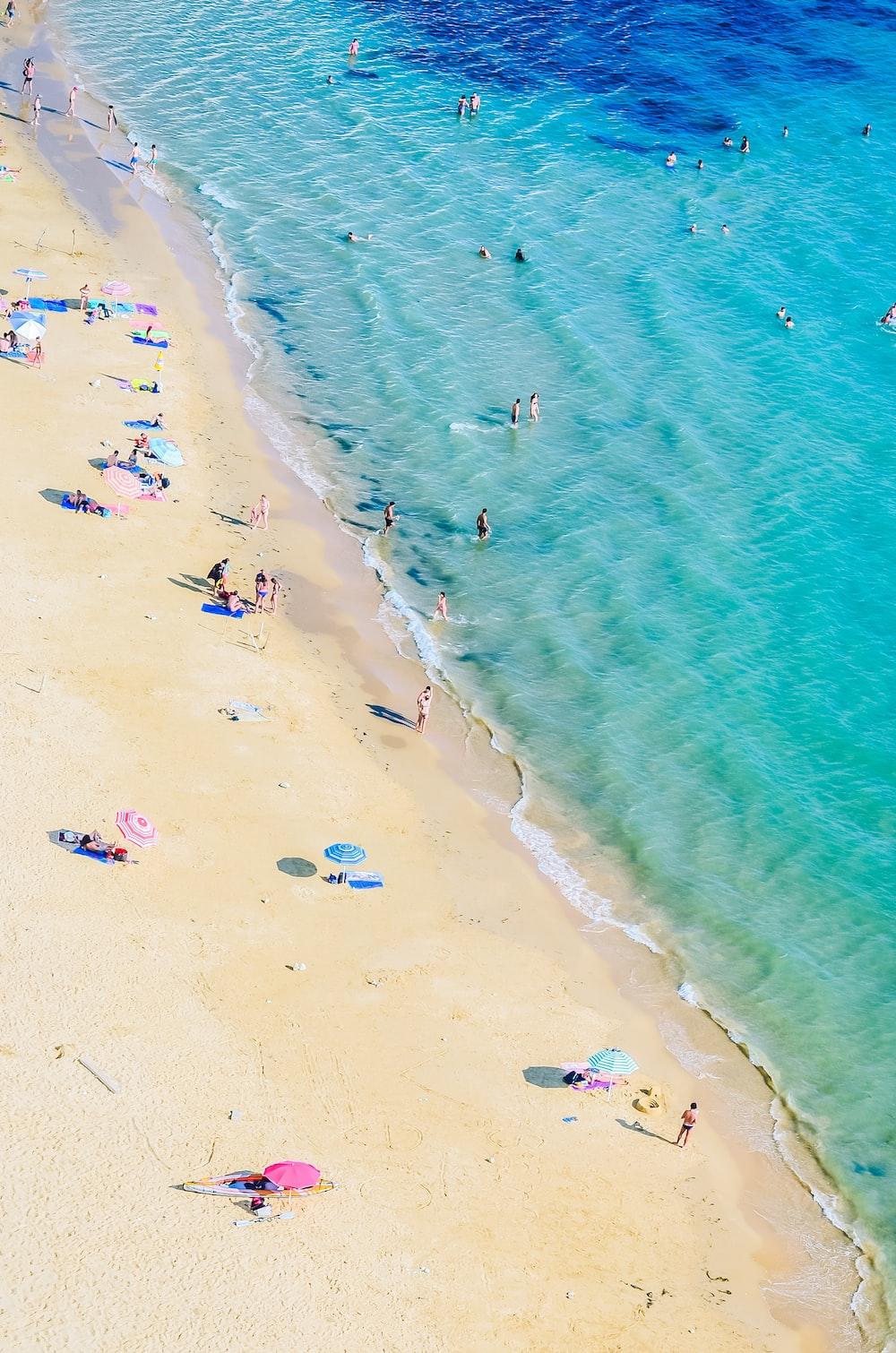 fotografia aerea di persone sulla spiaggia