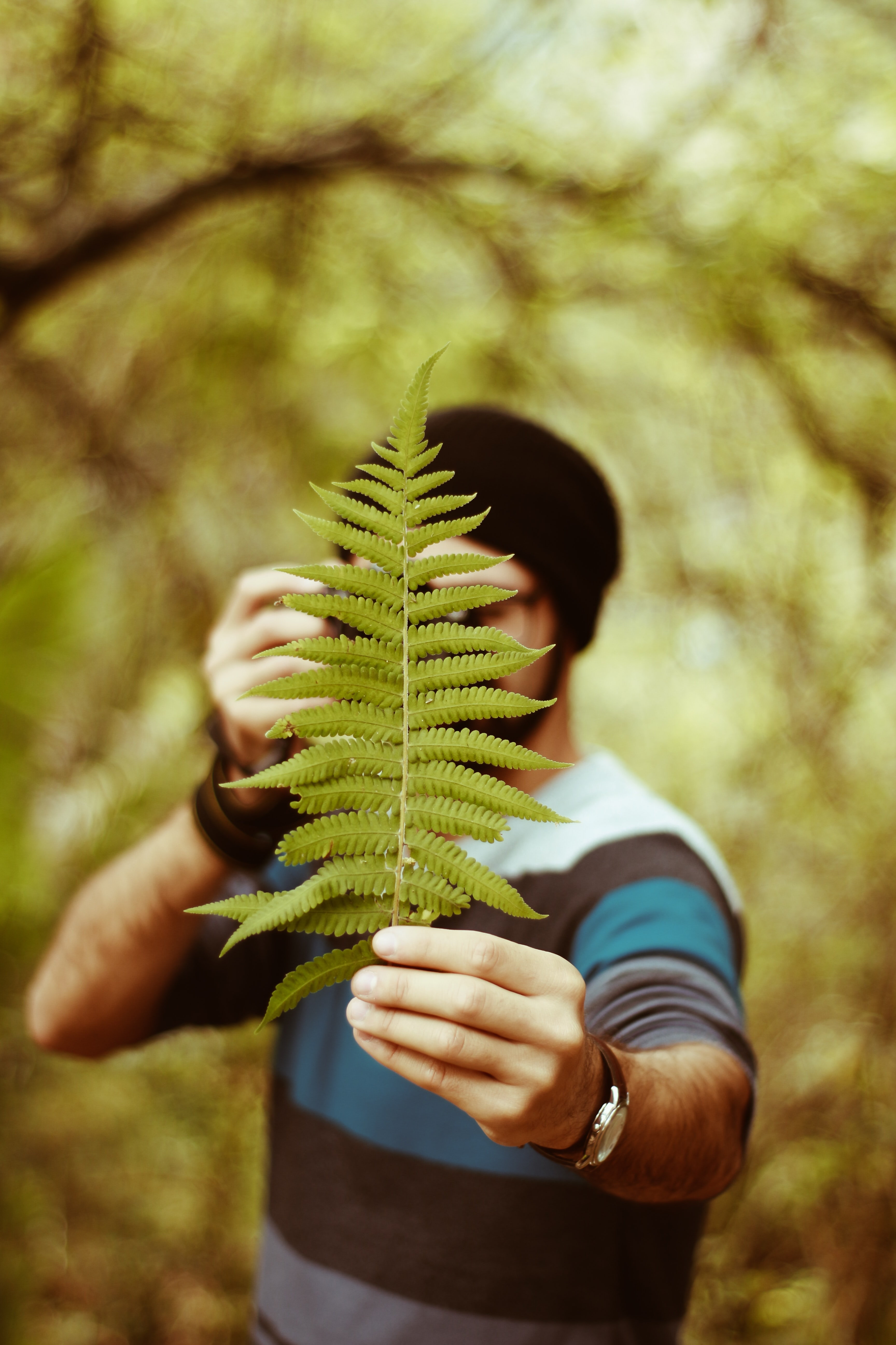 man holding fern plant selective focus photography