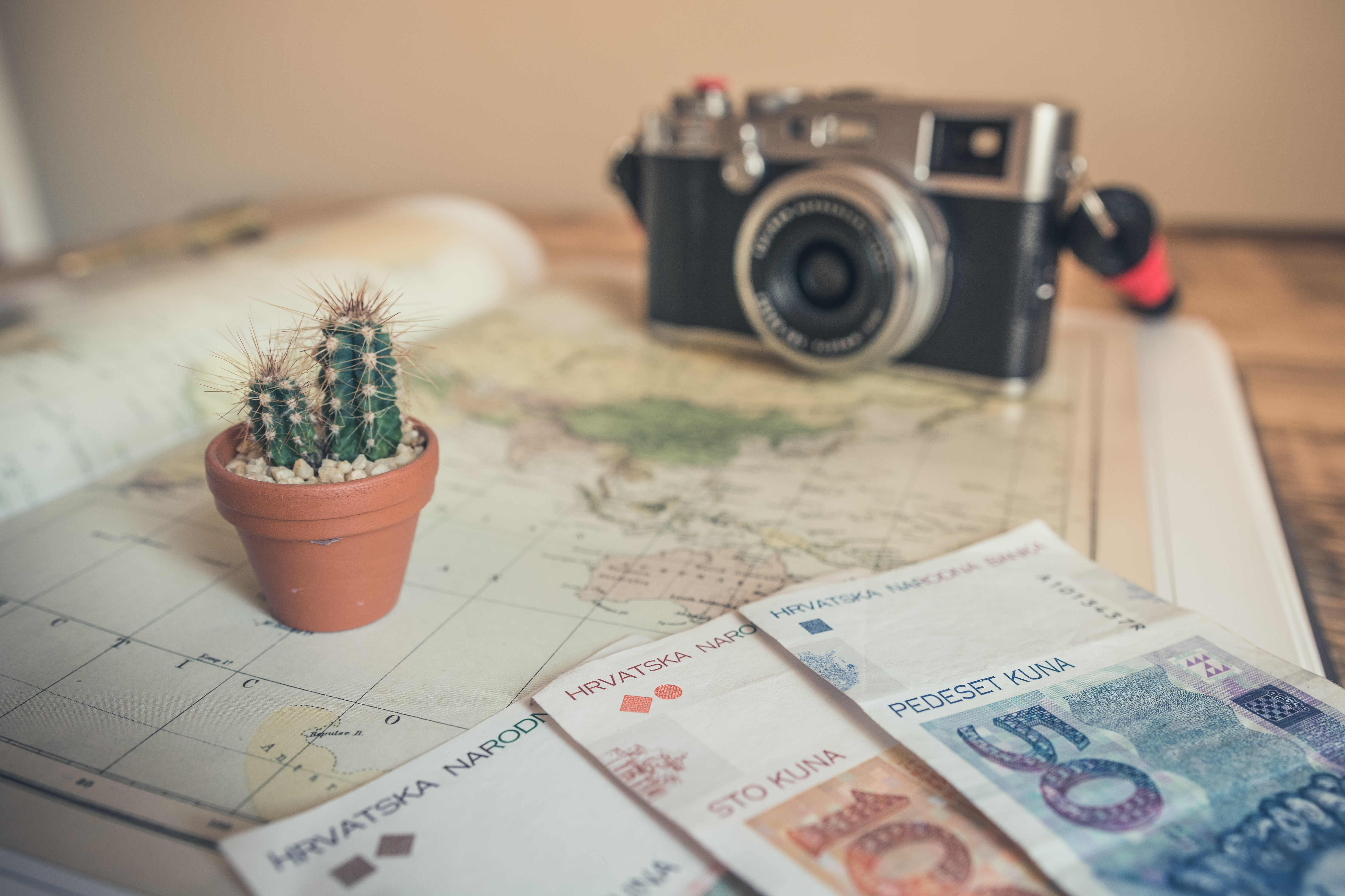 Traveller's camera, foreign currency, and cactus on a map