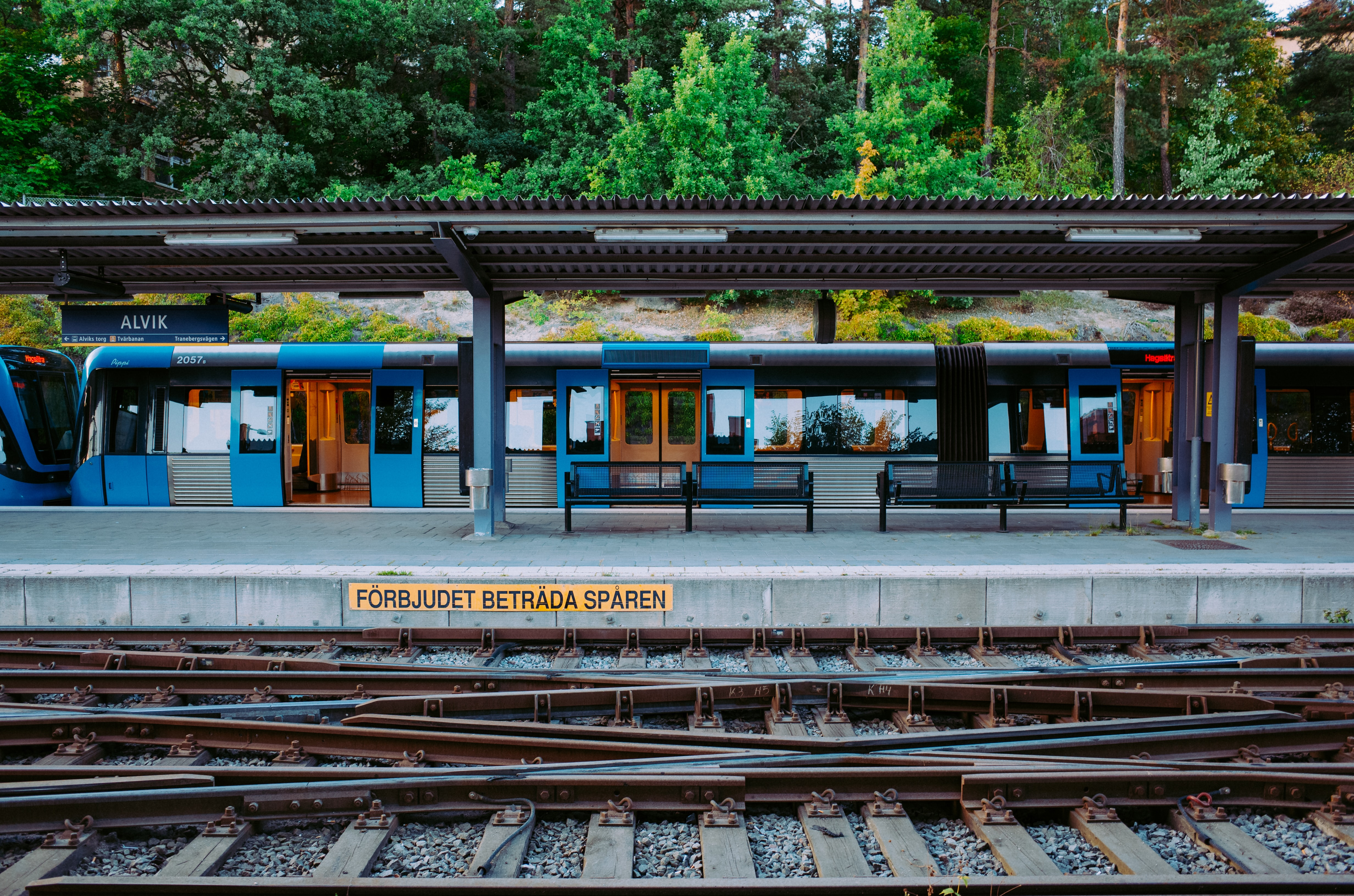 blue and gray train on station