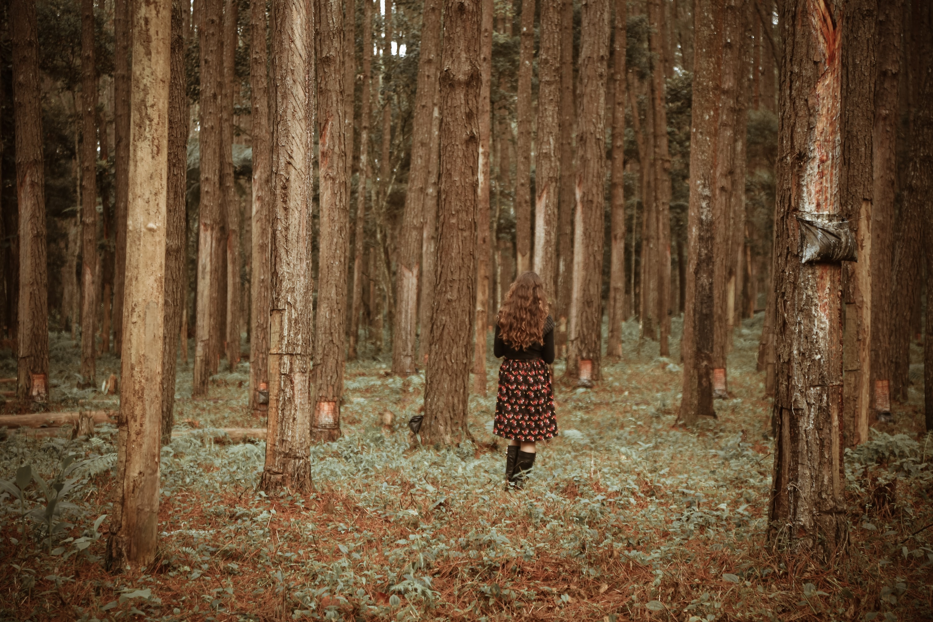 woman on walking forest