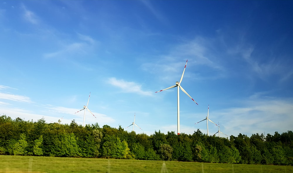 white windmill surrounded by tall tree under blue sky at daytime