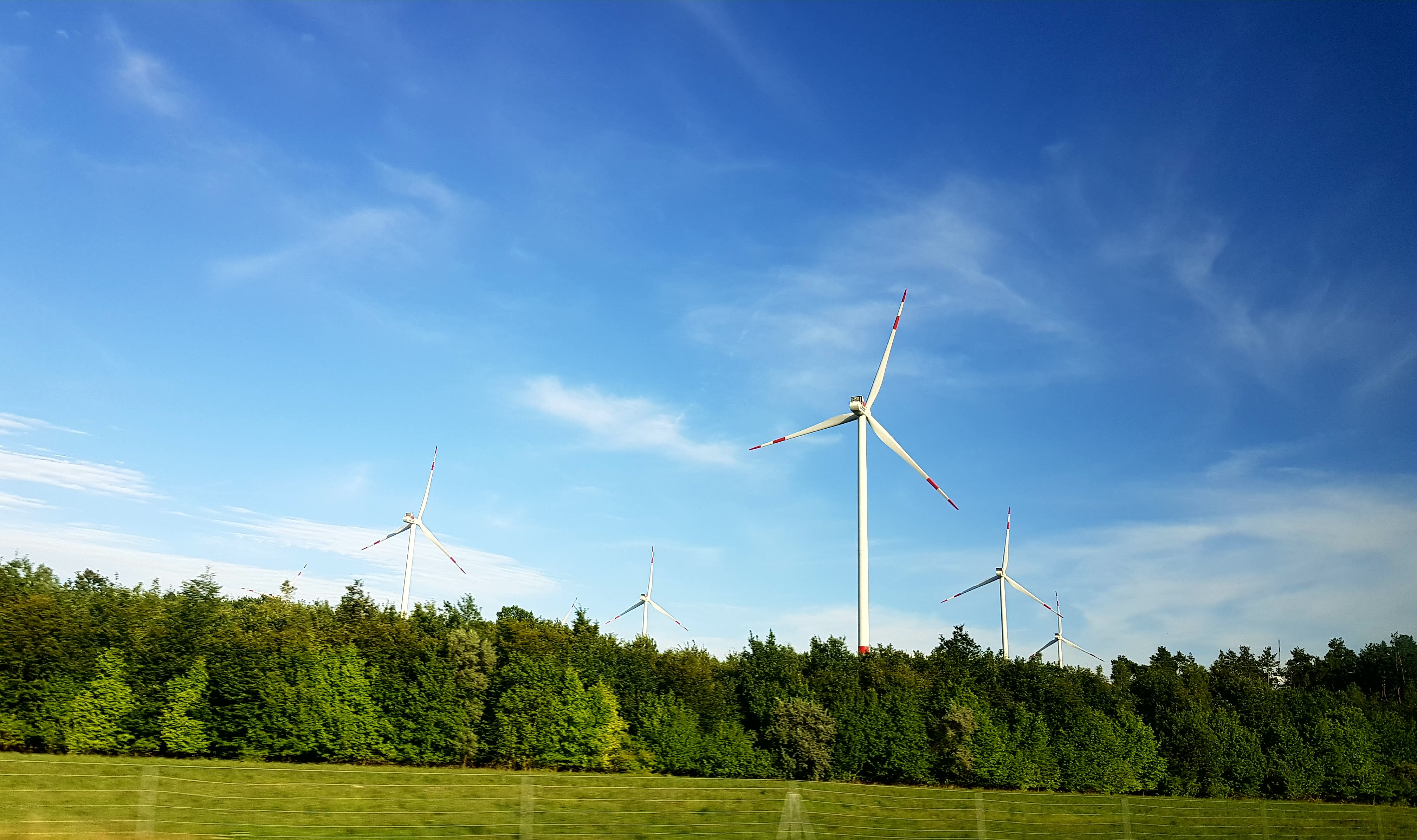 Wind turbines line a blue sky surrounded by green forest