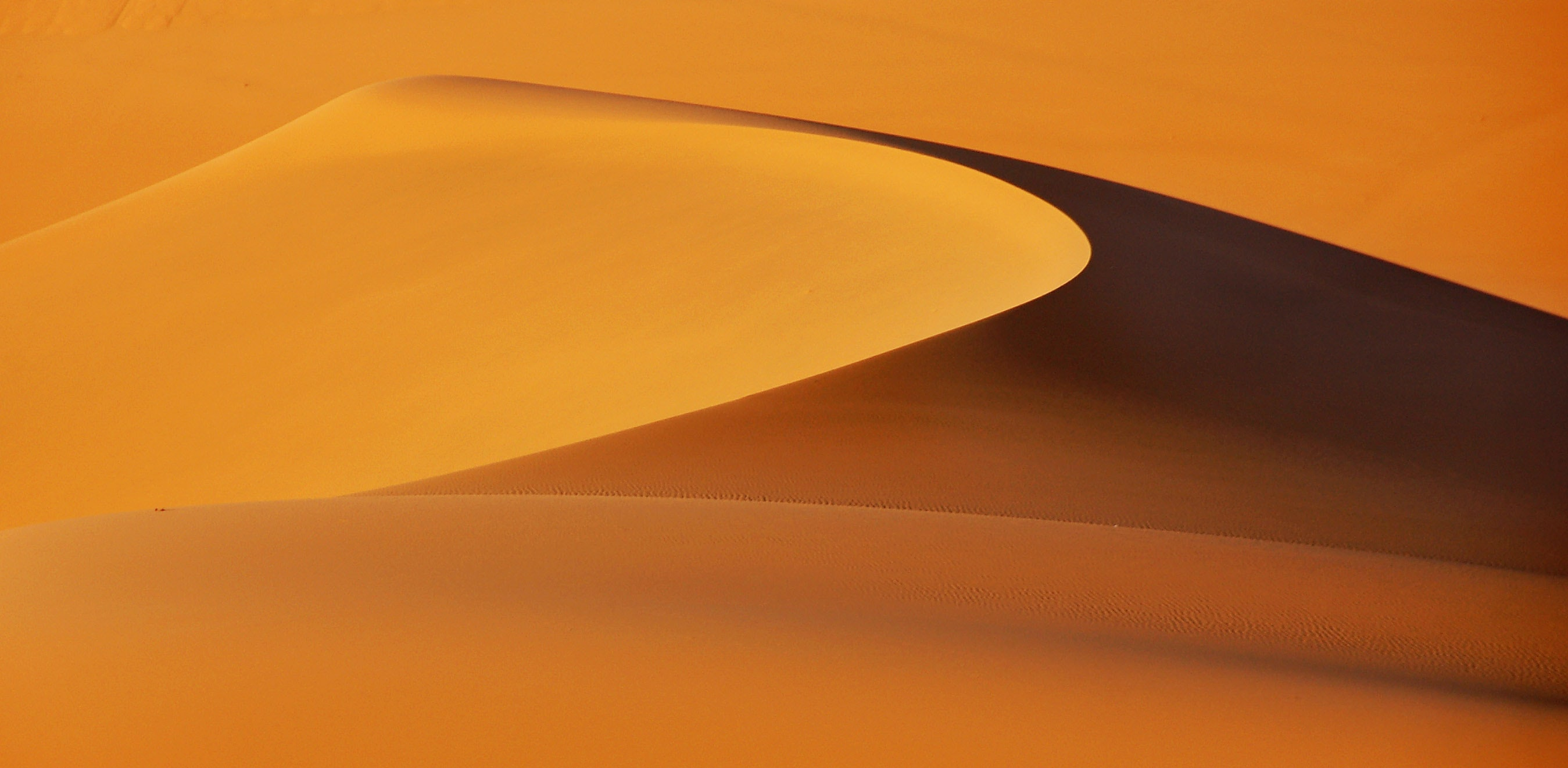 sand dunes graphic wallpaper