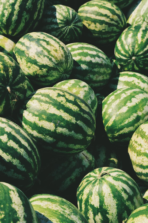 watermelon lot