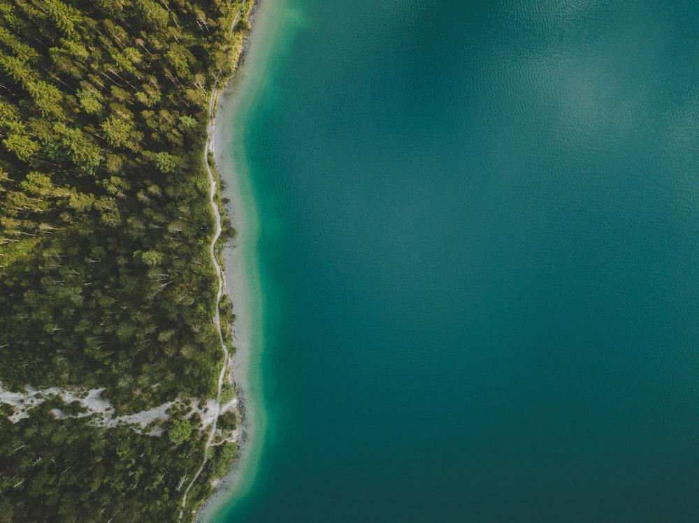 bird's eye view of island and sea