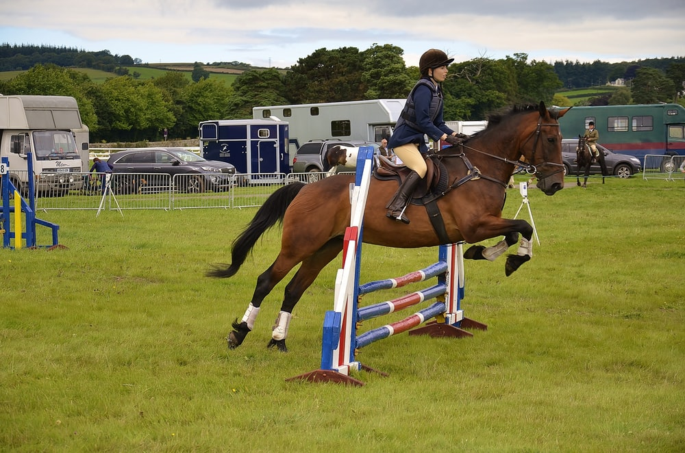 person riding on horse performing sport