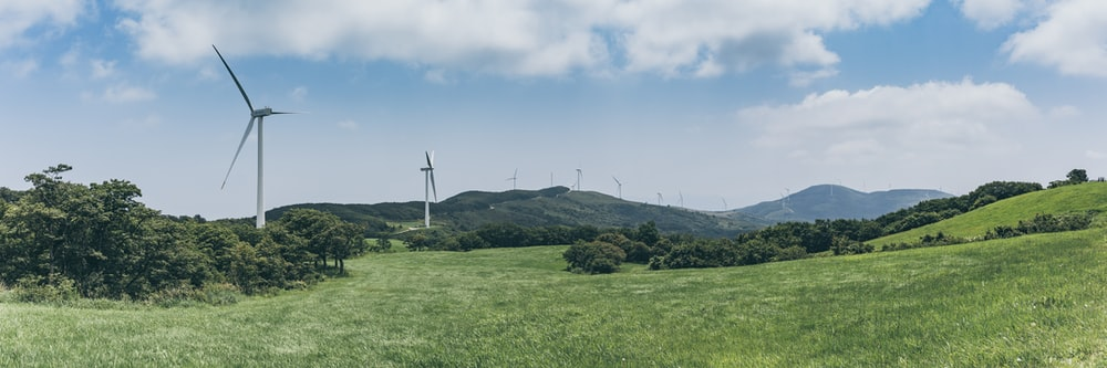 white windmill beside trees
