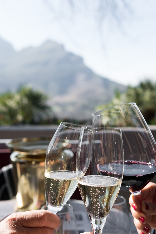 three person holding wine glasses