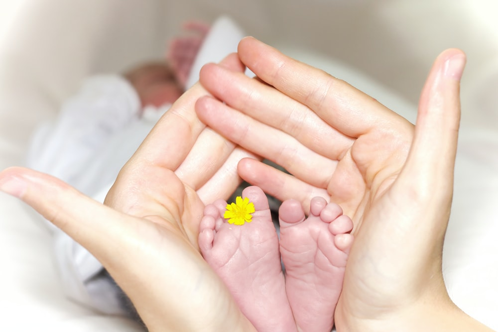 person holding baby's toe with yellow petaled flower in between