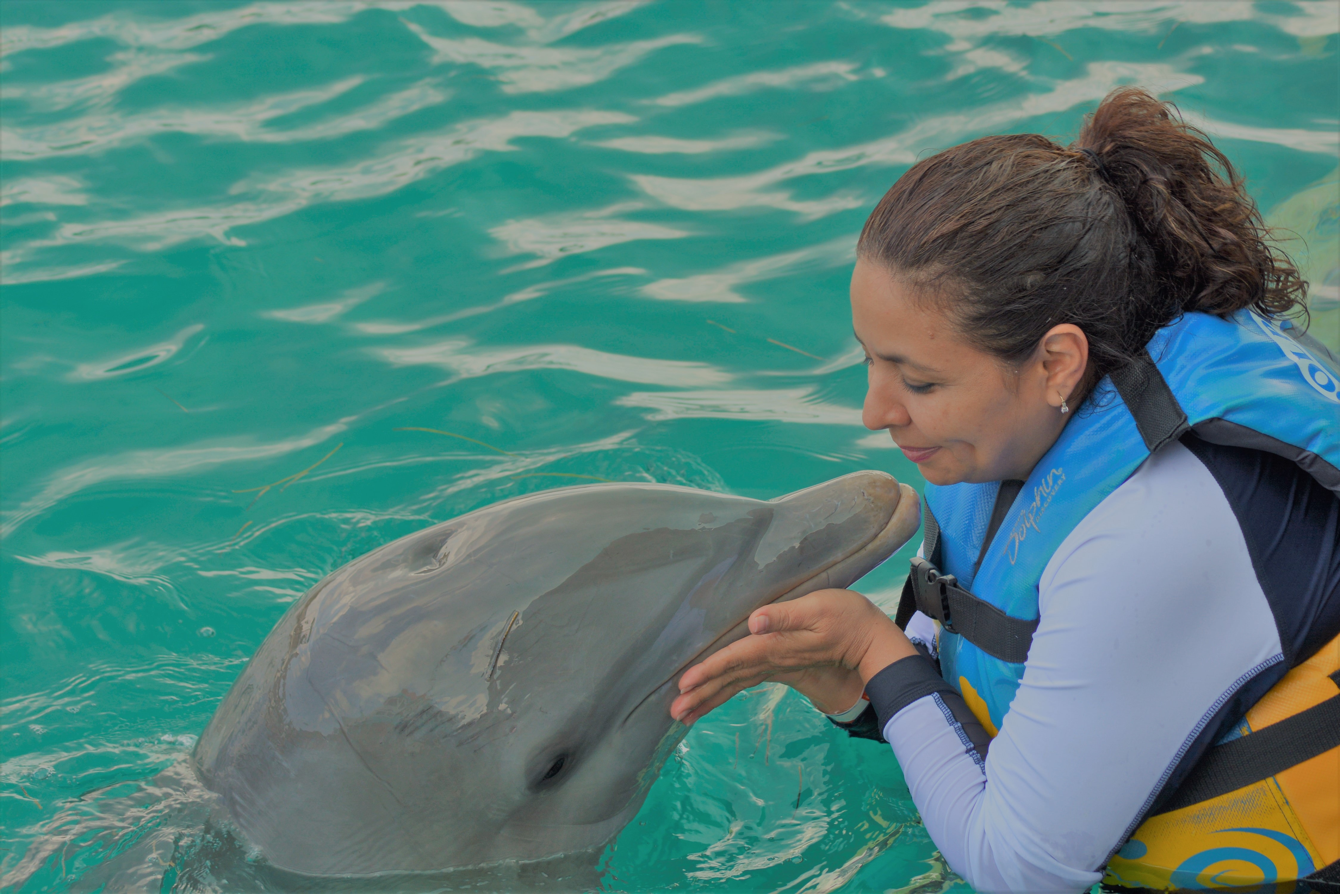 A woman wearing a yellow and blue life jacket giving a dolphin a kiss