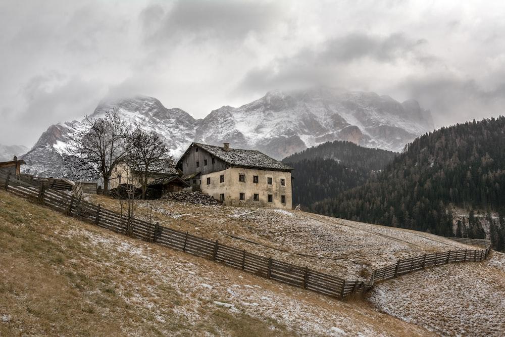 house near tree on top of mountain