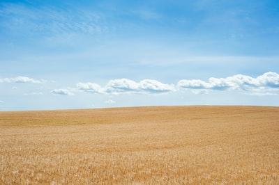 desert under blue skies prairie teams background