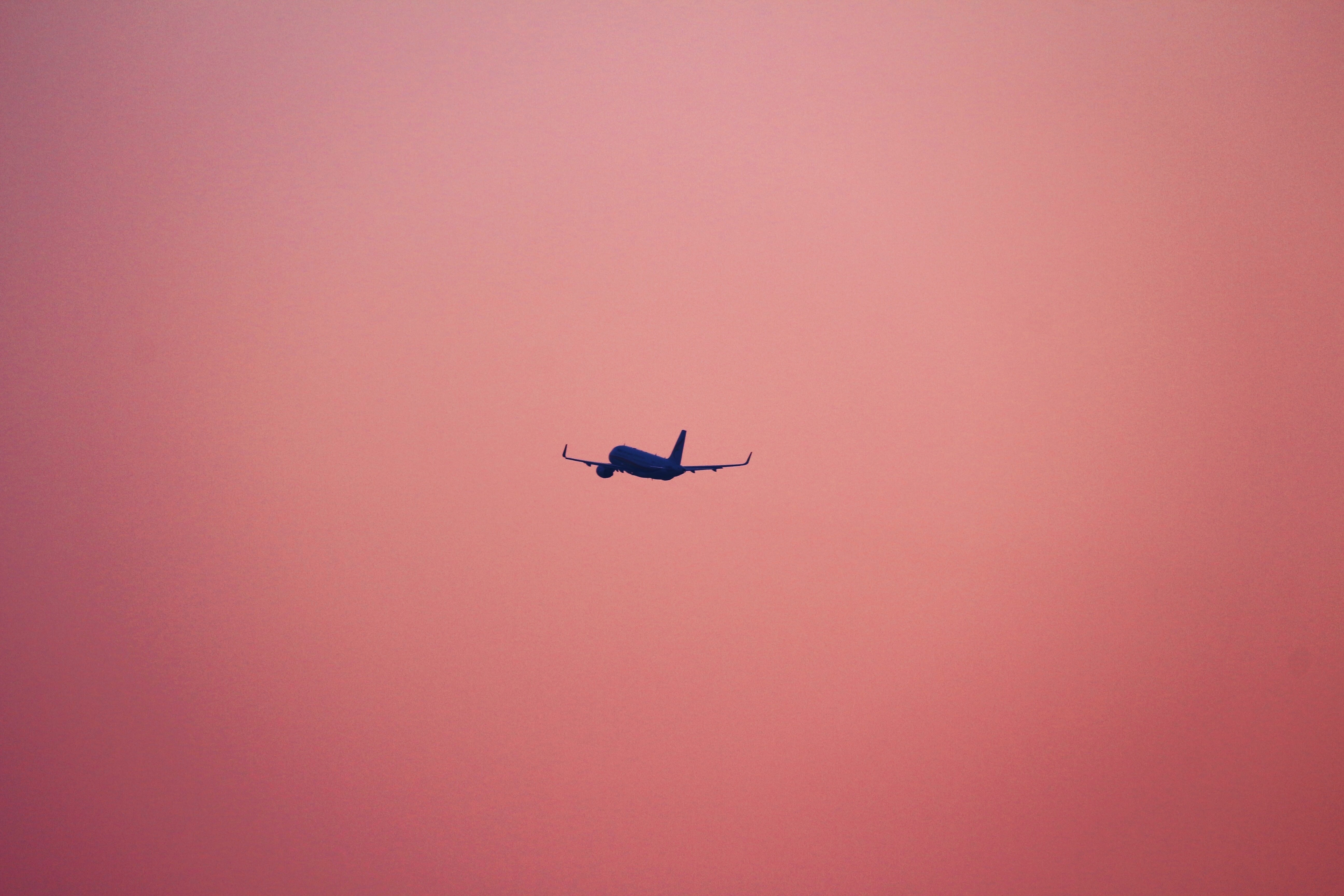 plane flying on pink background