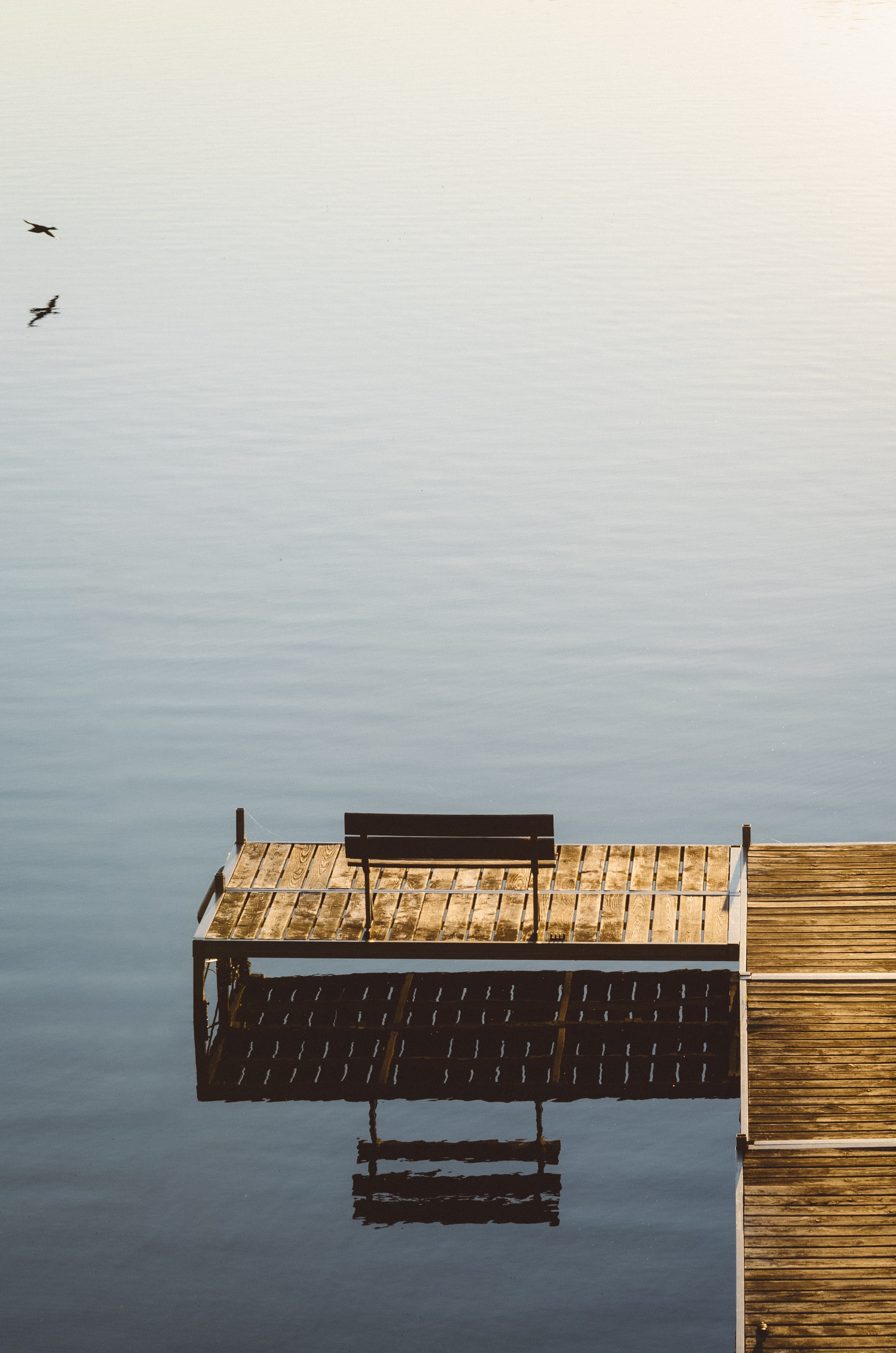wooden bench on dock