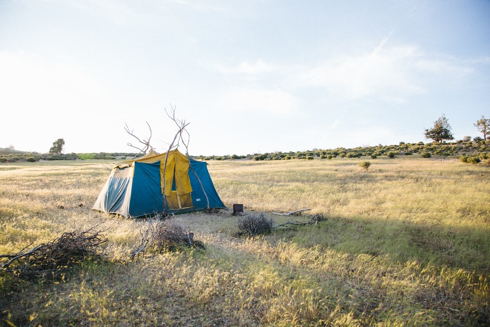 blue and yellow cabin tent on field