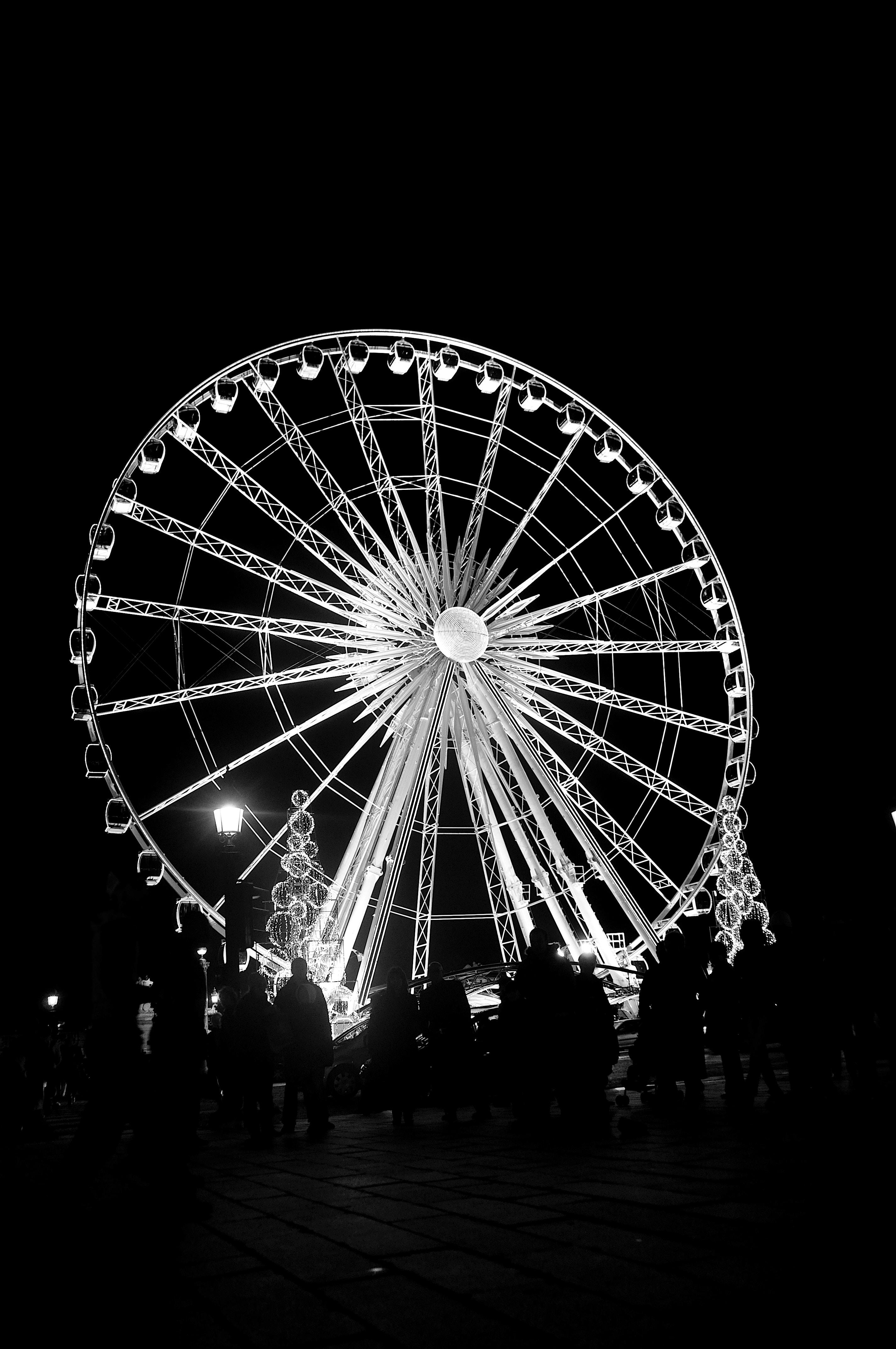 people standing near Ferris Wheel