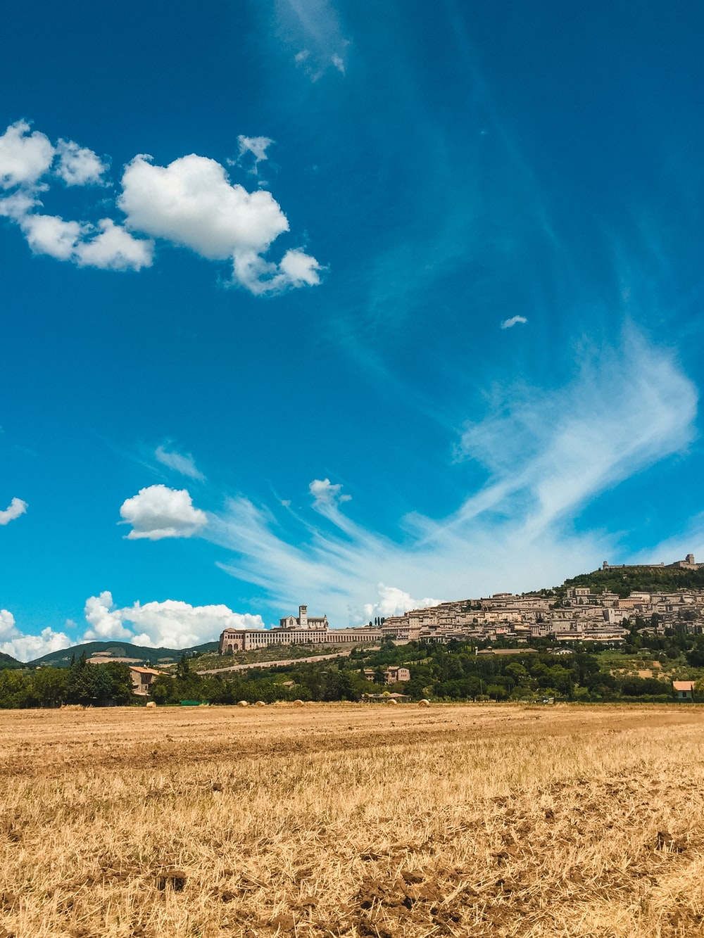 grass field near buildings under blue sky