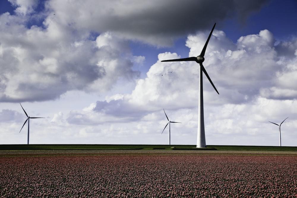 white wind turbines