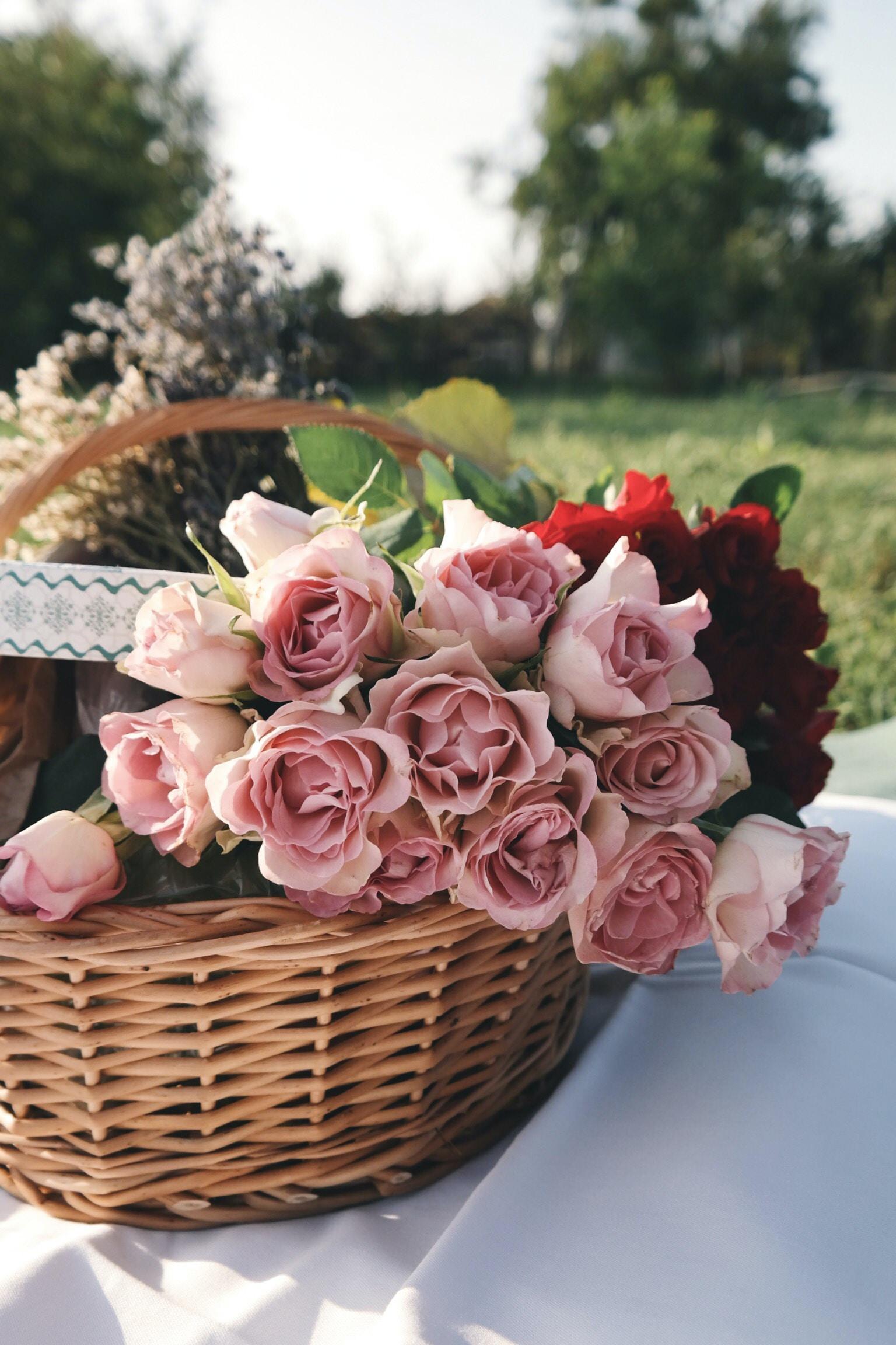 Pink roses sitting inside a brown wicker basket.
