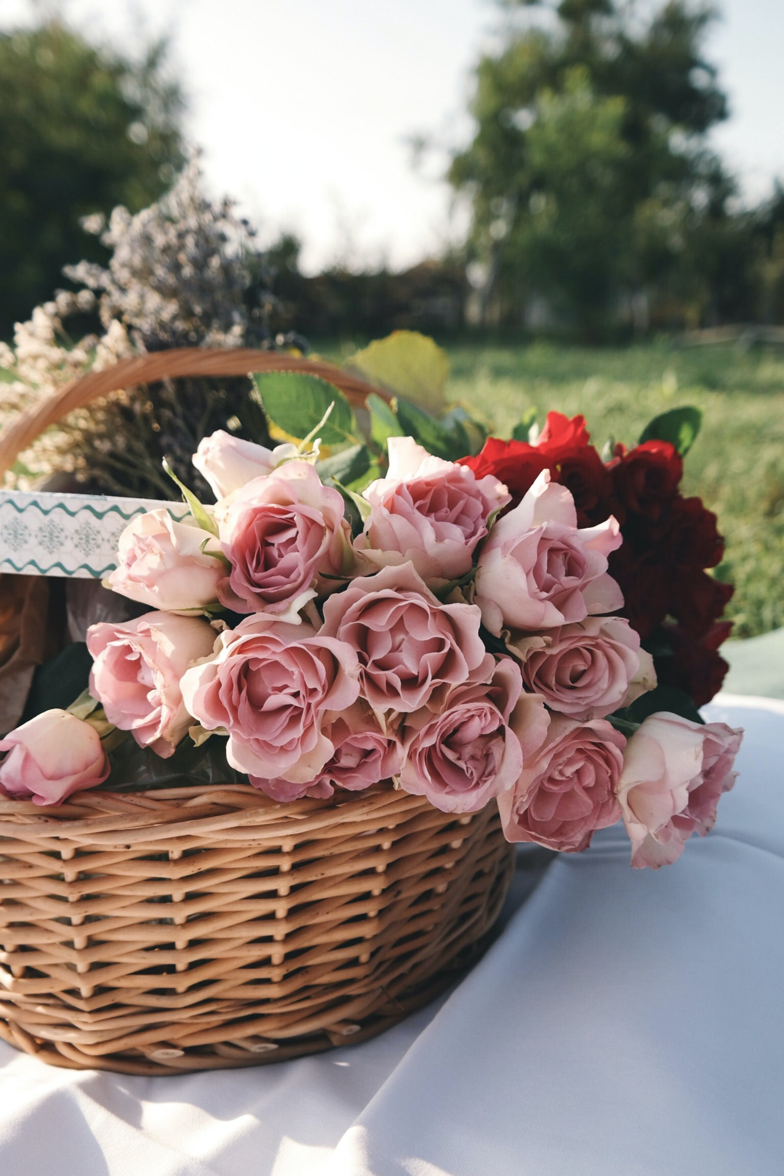 Pink roses sitting inside a brown wicker basket.
