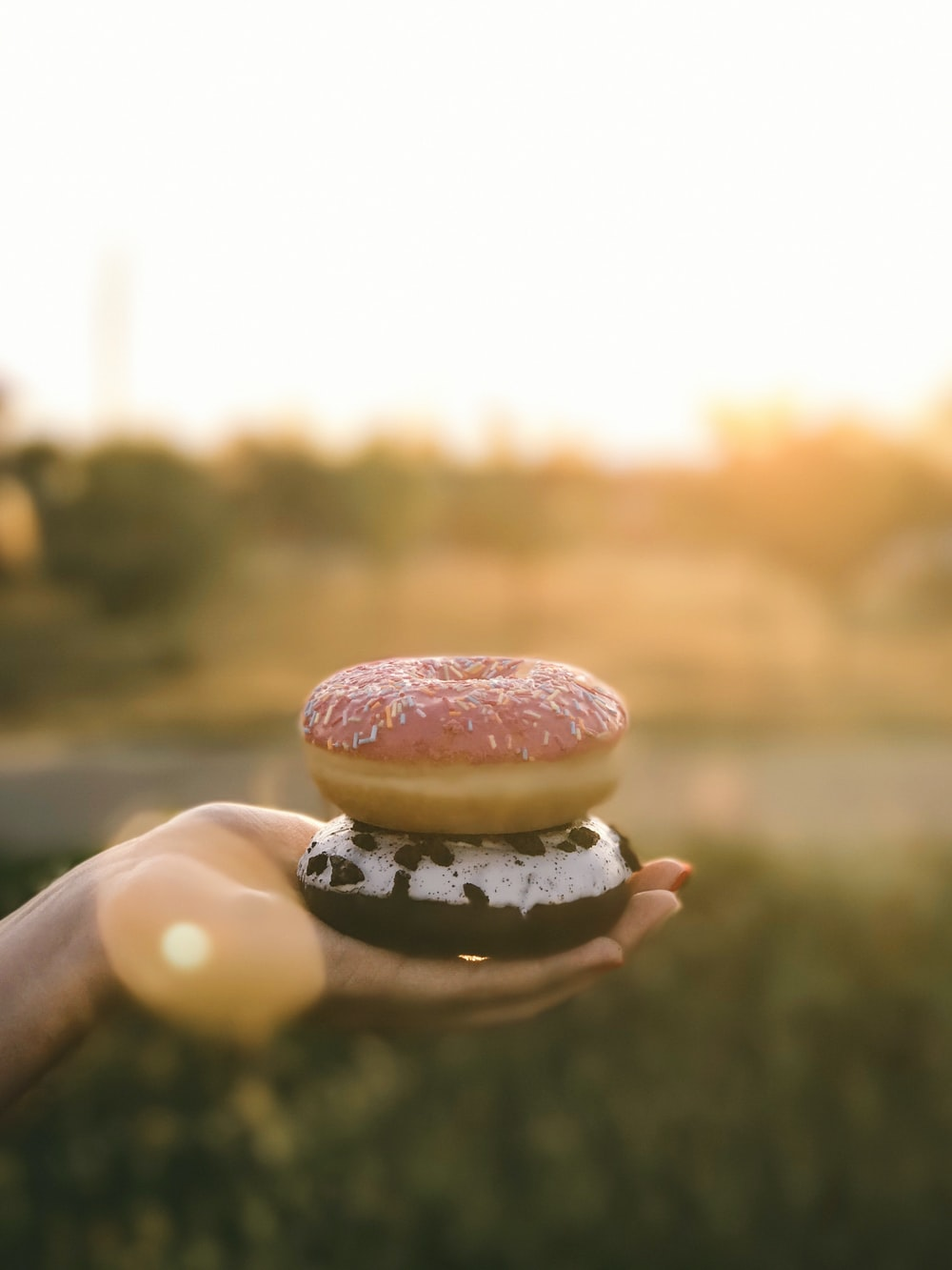two donuts on human hand