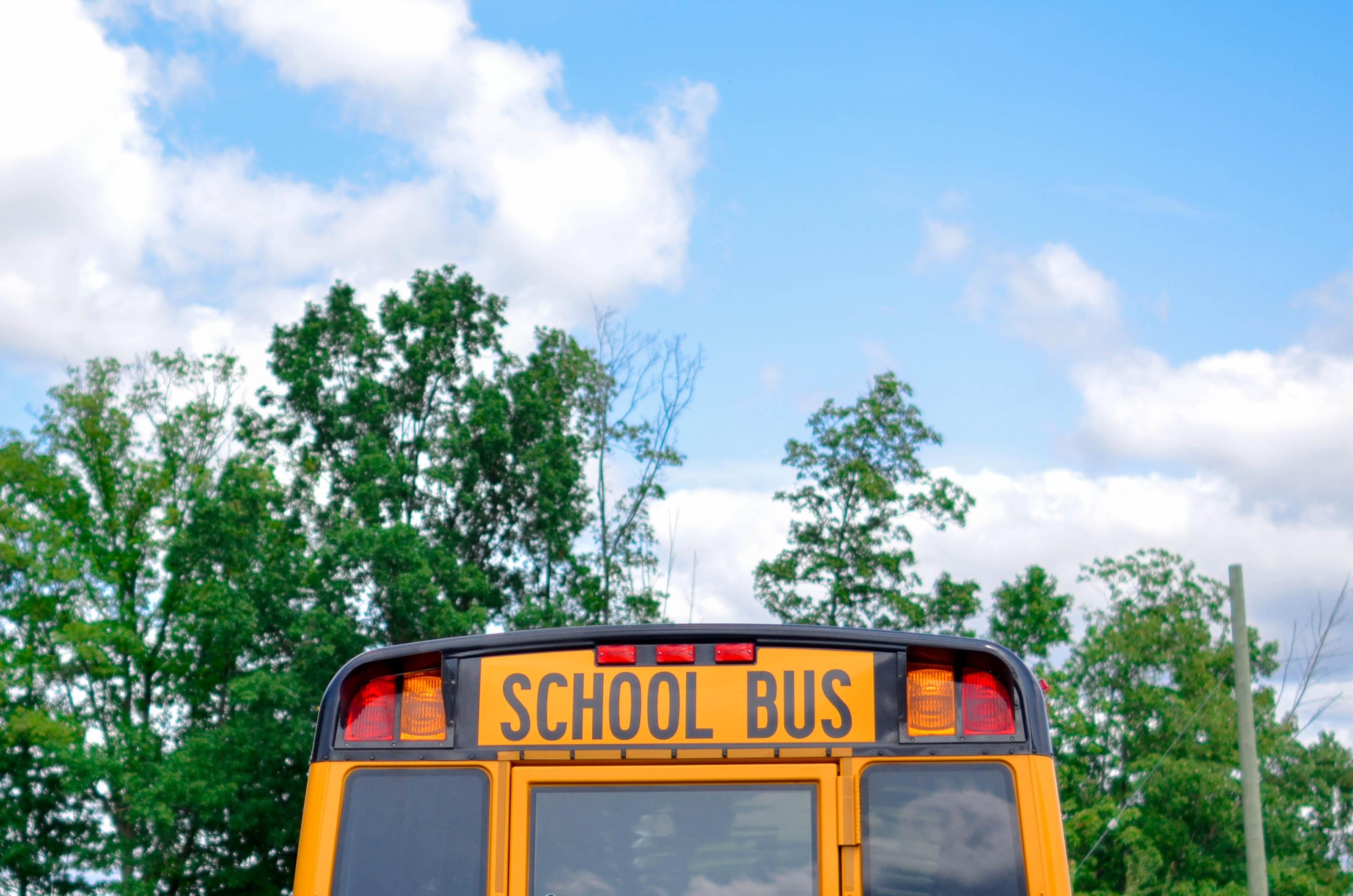 Blue School Bus school-bus stories
