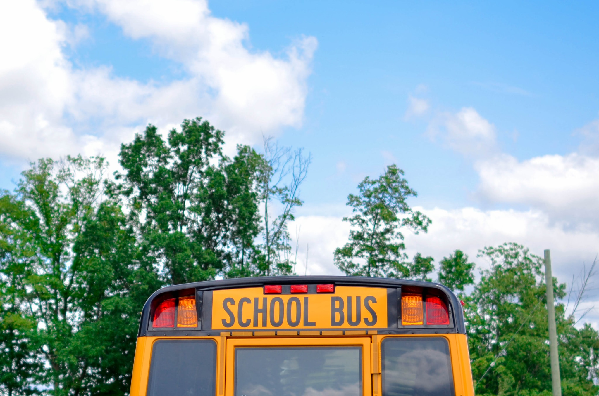 school bus near green trees under cloudy sky during daytime
