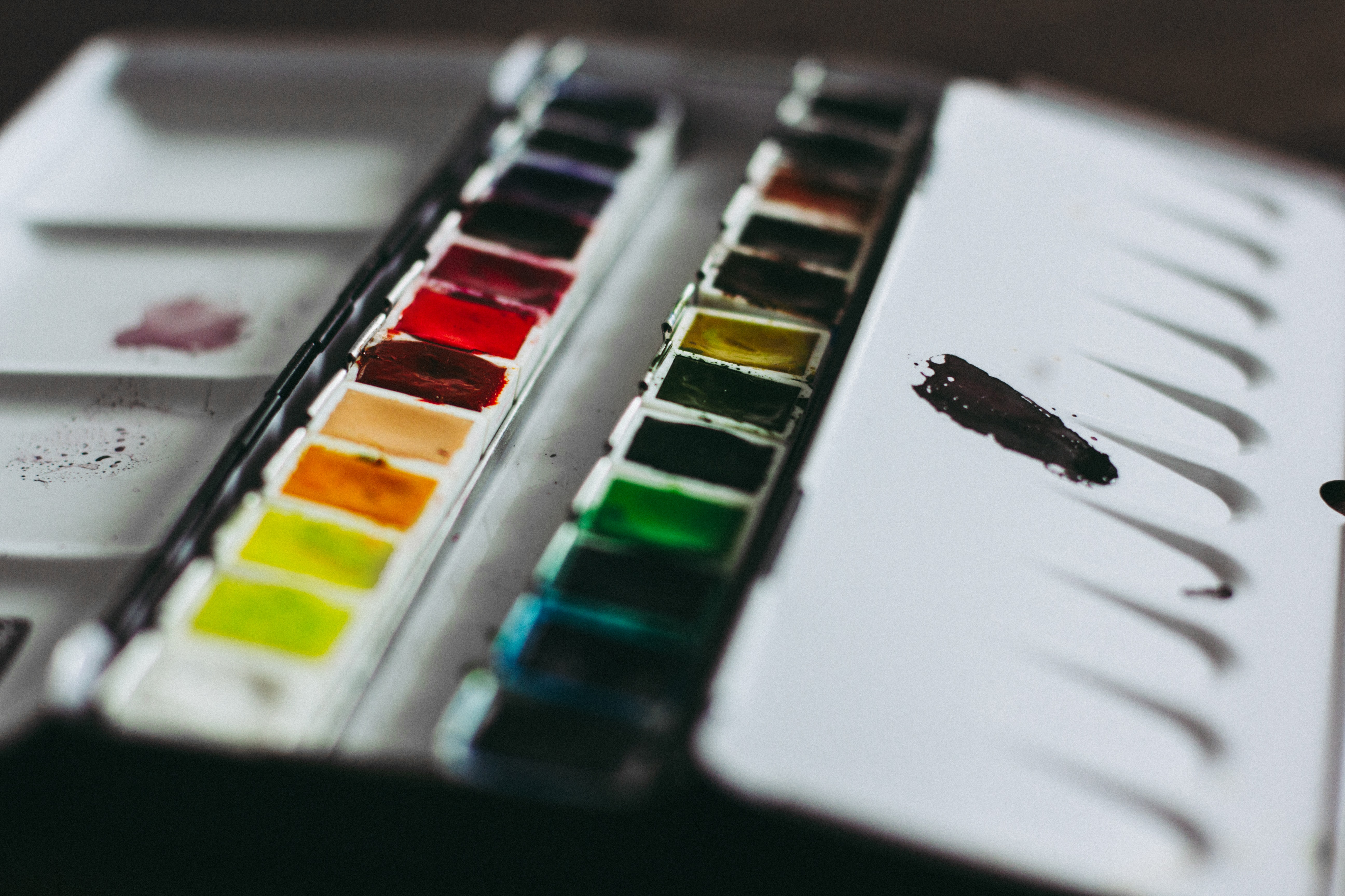 closeup photo of paint palette