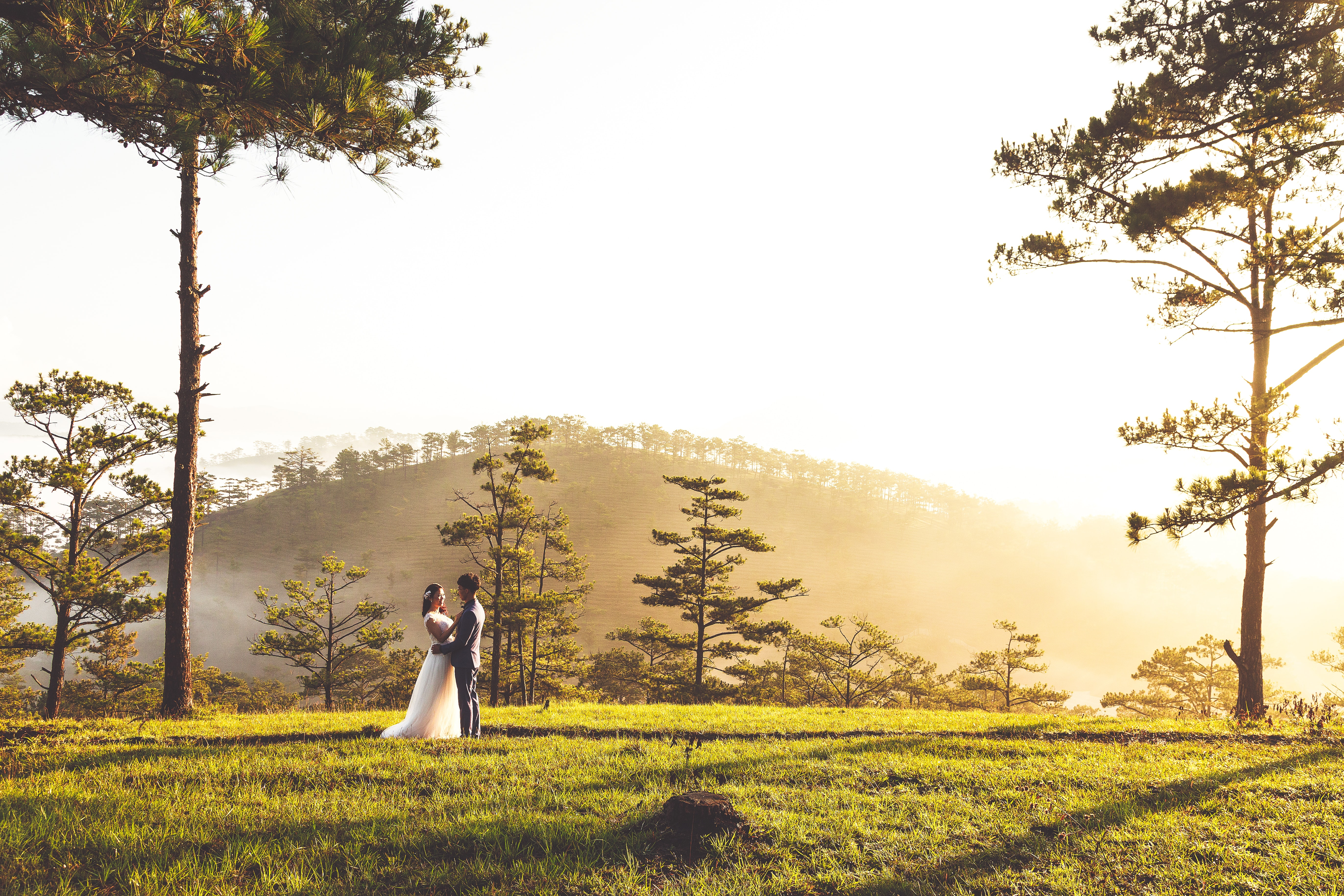 groom and bride standing on green grass field while cuddling and with mountain and trees at the distance during daytime