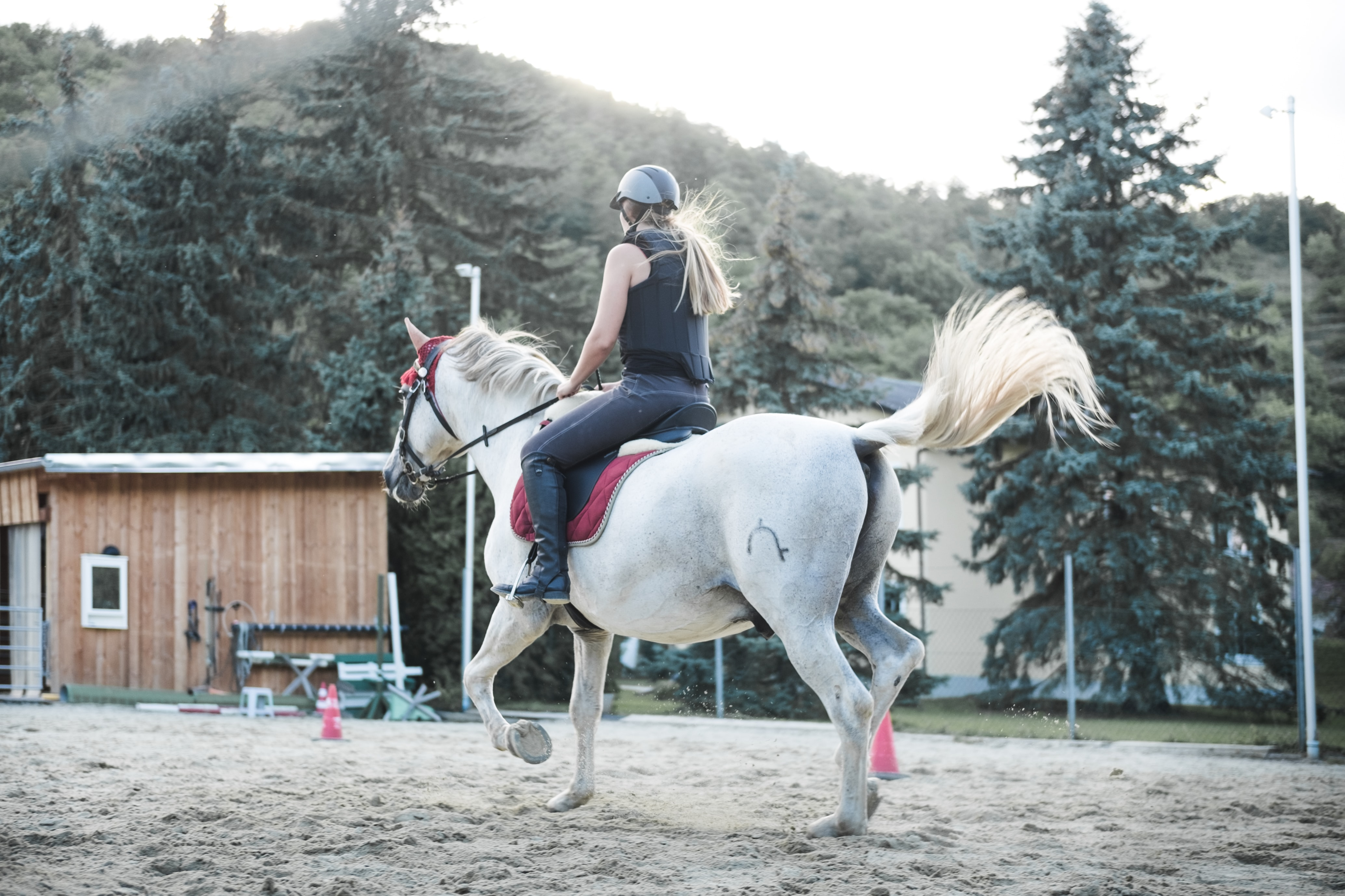 woman horseback riding beside trees and mountain in distance
