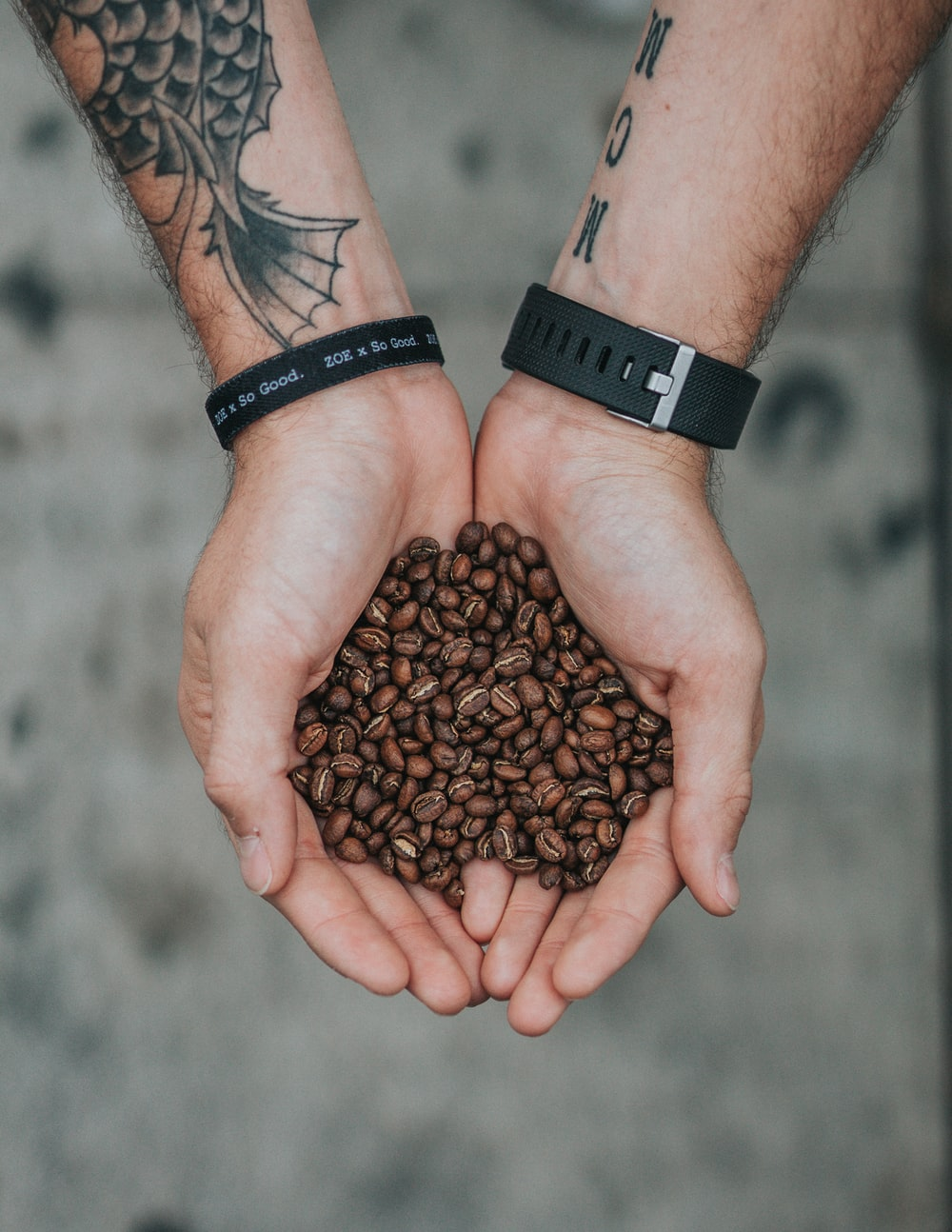 person holding brown coffee beans selective focus photography