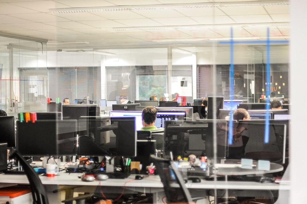 people using desktop computer inside office