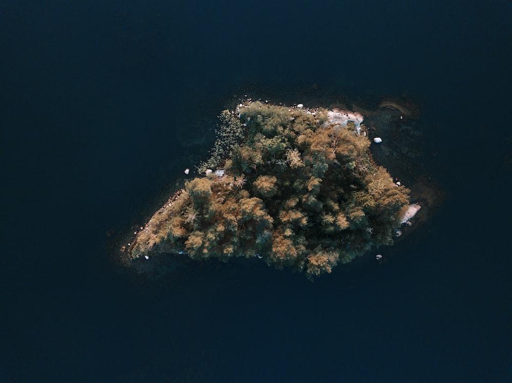 birds eye view of island