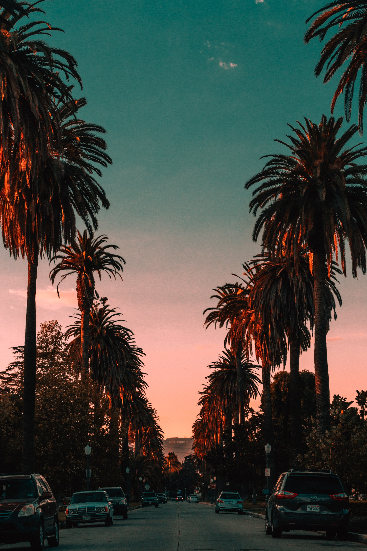 California Wallpapers Free Hd Download 500 Hq Unsplash