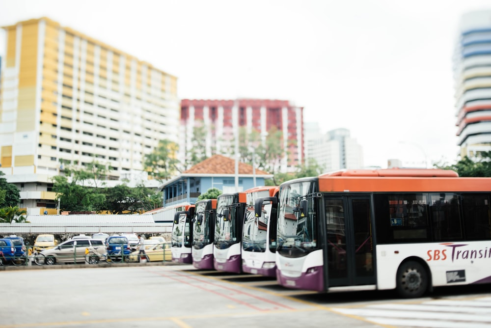 several white and red buses during daytime