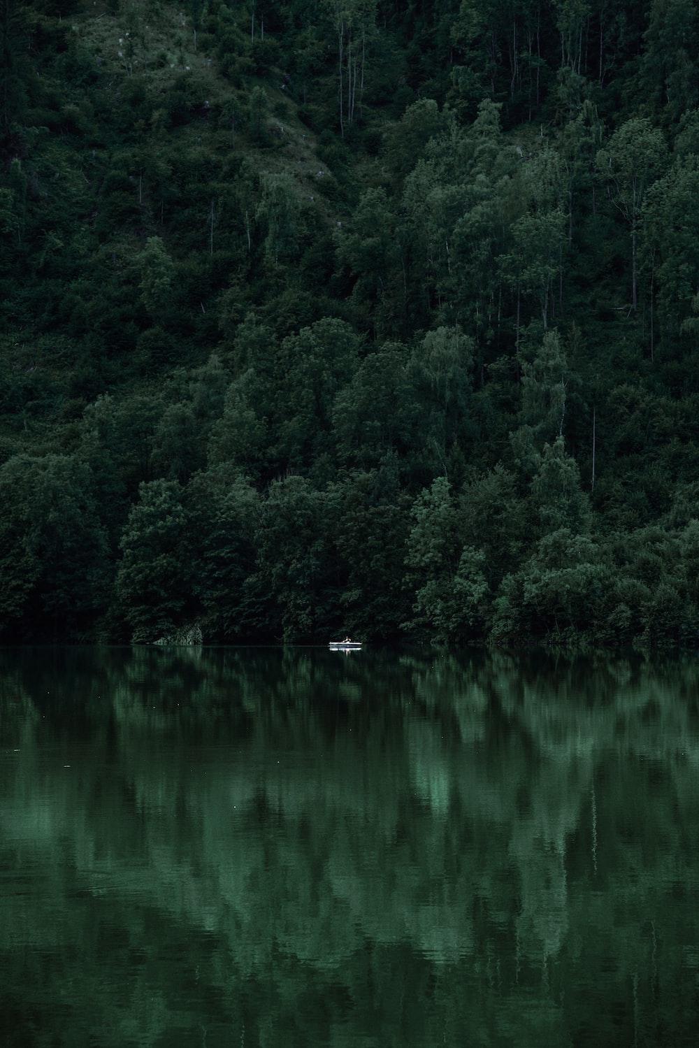 Crystal-clear lake in Banff | HD photo by Tj Holowaychuk