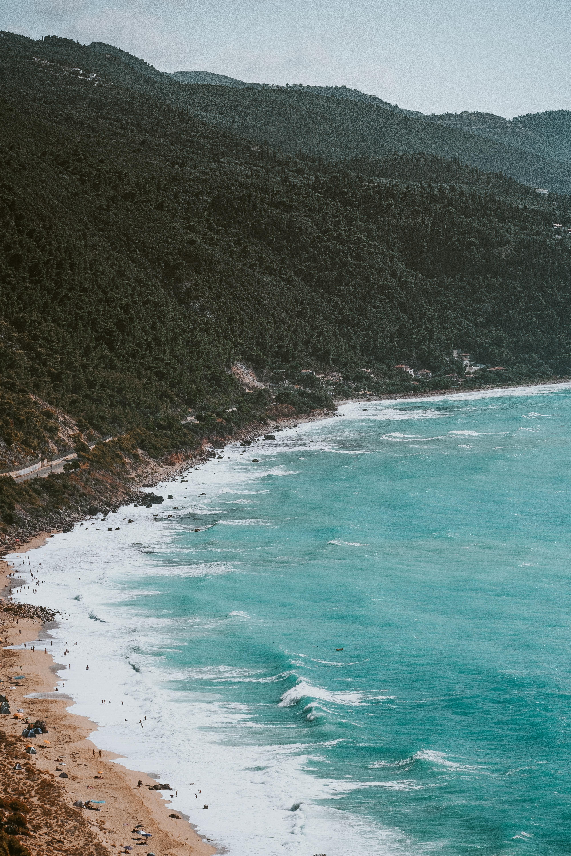 bird's eye view of seashore beside forest mountain