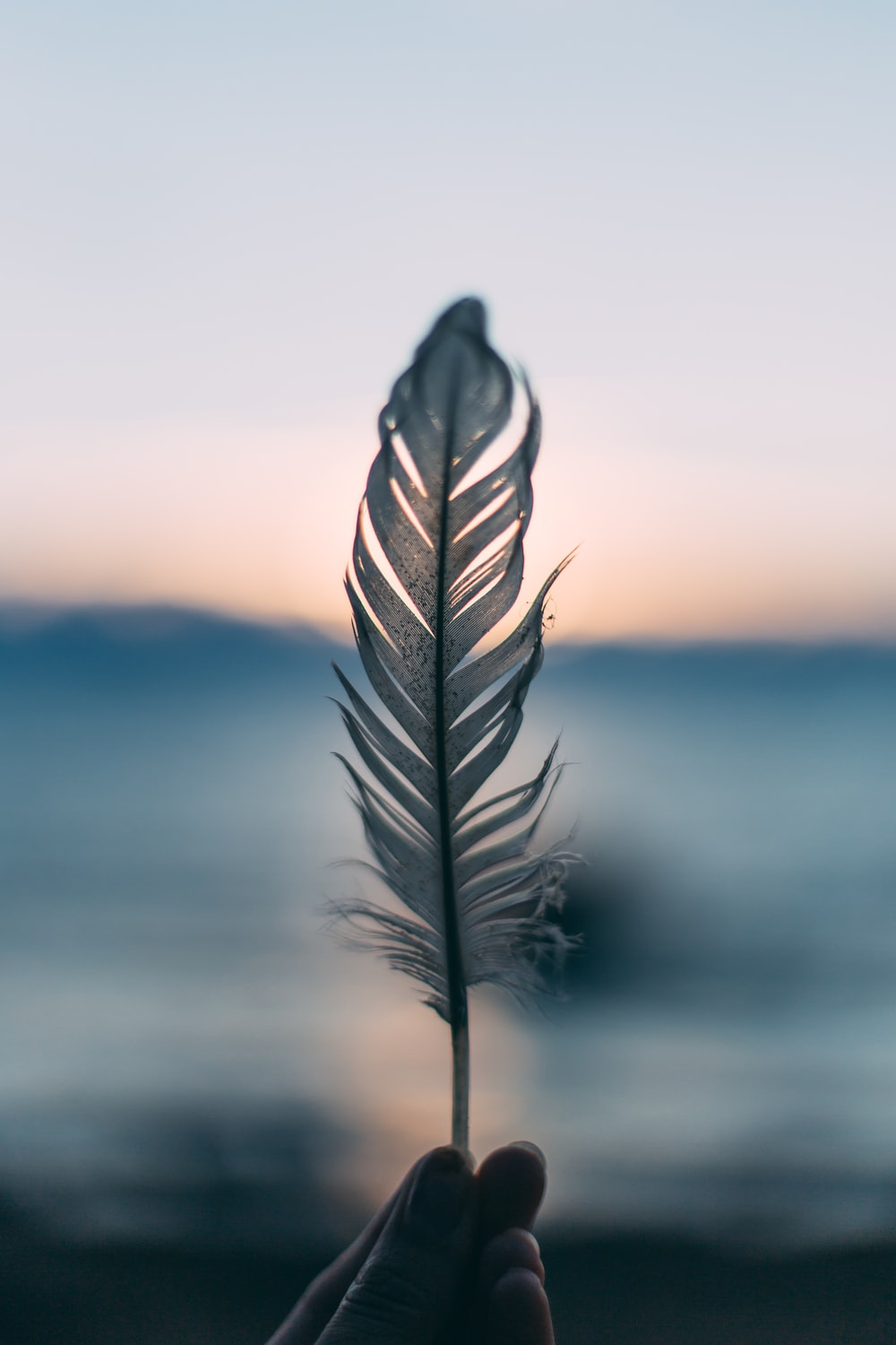 tilt shift lens photography of person holding white feather