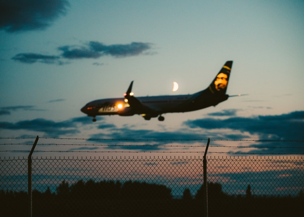 photo of black commercial airplane ready for landing during golden hour